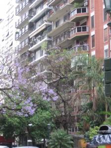 Buenos Aires Apartment Building