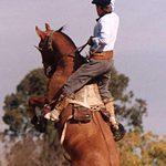 Argentinean Gaucho - La Doma